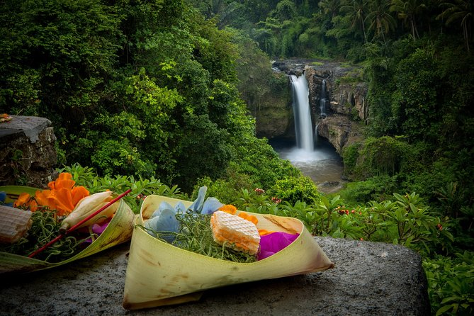 Best of Ubud Tour: Nature, Culture, Heritage and Temples