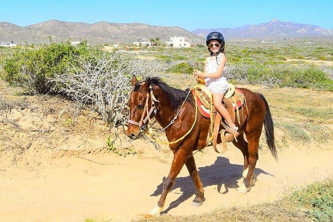 COMBO Horseback Riding & UTV Tour
