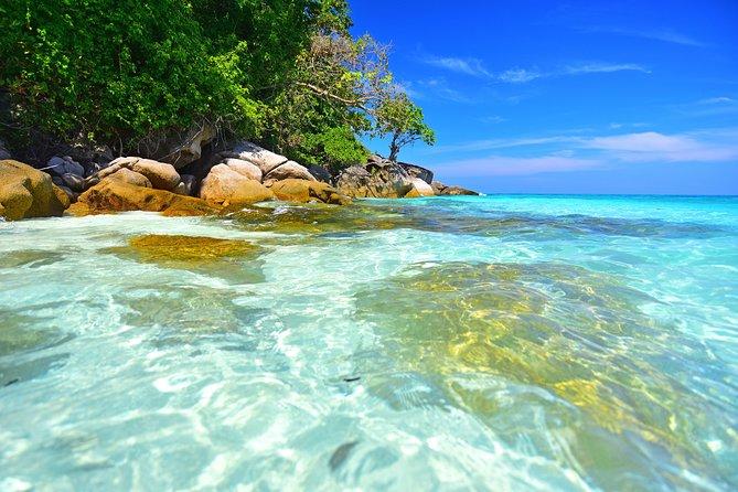 Surin Island Snorkeling
