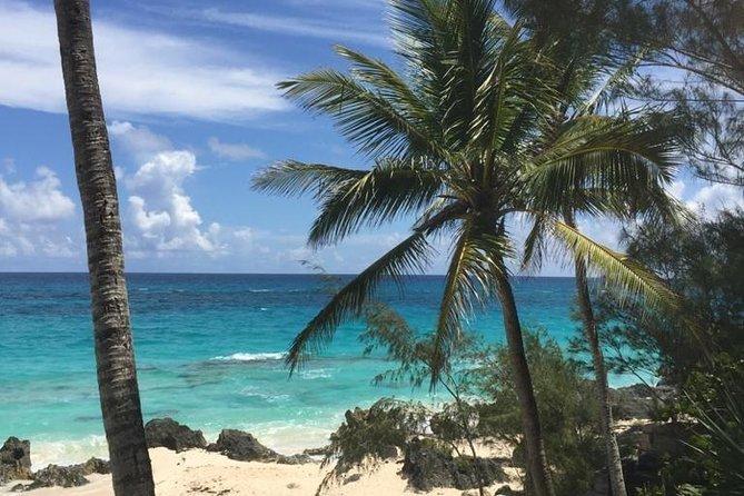 Bermuda Beach Hop Experience