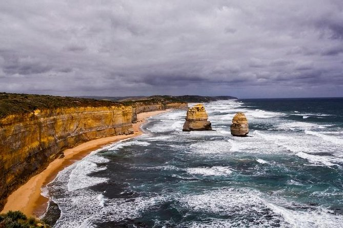 Family Friendly Great Ocean Road Tour with Wildlife Group Tour (Max 11 Pax)