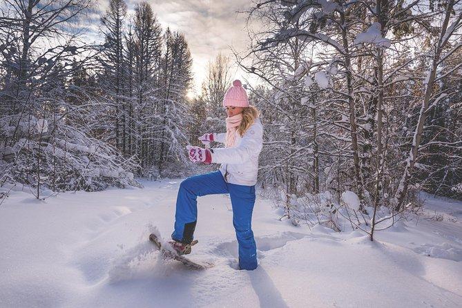 SnowshoeingFun Tour from Cluj Napoca