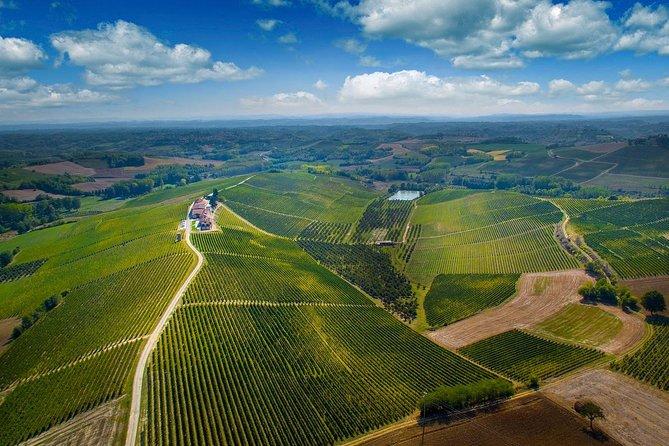 Family-run estate visit with a local winemaker in Monferrato