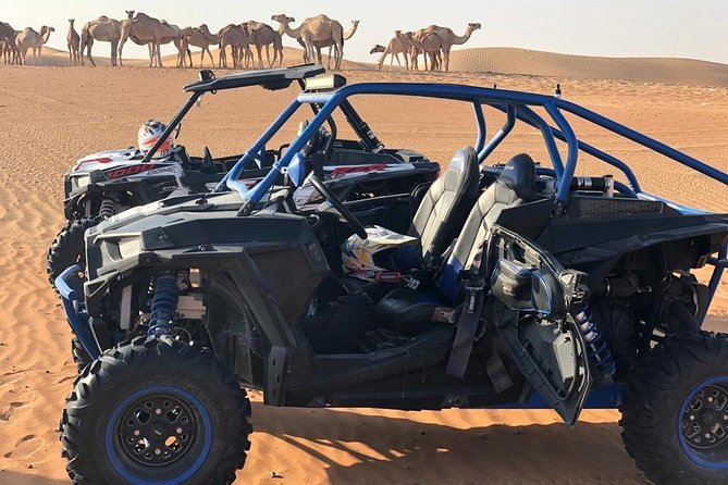 Buggy Desert Adventure Tour with Free Pick n Drop photo 8