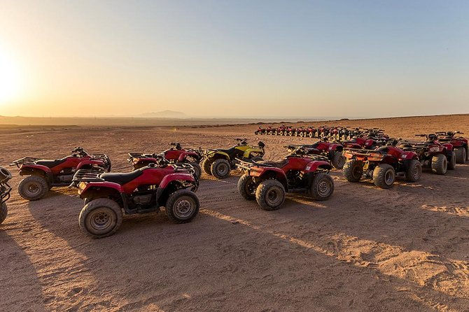Quad biking with Camel ride and Beduin dinner photo 6