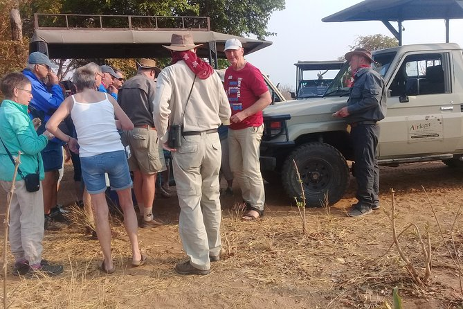 chobe national park 9hr full day game drive