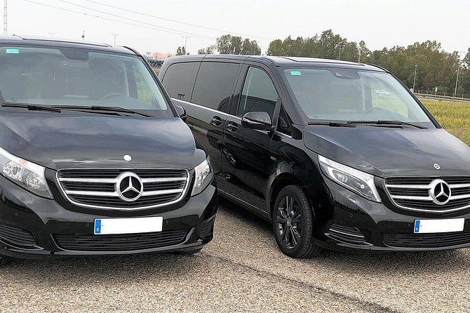 One-way transfer by minivan from Seville Airport to hotel in Seville Center