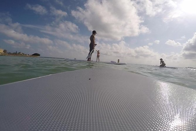 1-Hr Stand up paddling x 4 in Miami
