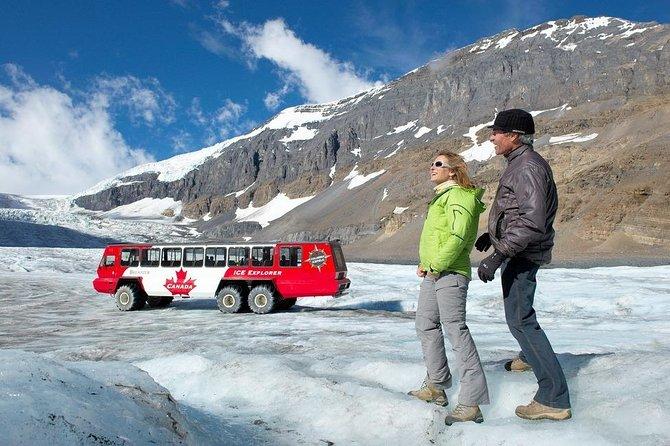 Glacier Day Tour: Calgary, Bow Lake, Columbia Icefield