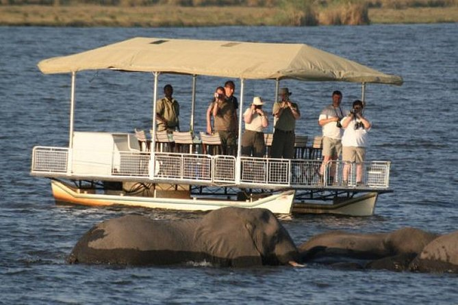 Chobe Full Day Trip (From Victoria Falls)