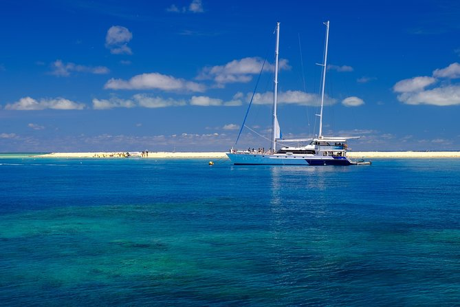 Ocean Spirit Michaelmas Cay Dive and Snorkel Cruise from Palm Cove