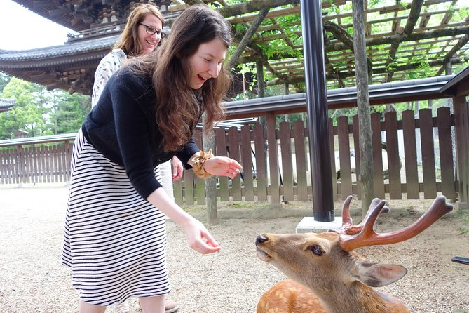 Private Nara Deer and Sake Adventure - Easy Day Trip from Kyoto or Osaka!