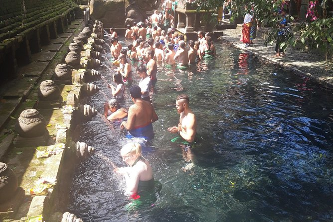"""Best of Ubud tour with Bali swing"" photo 2"