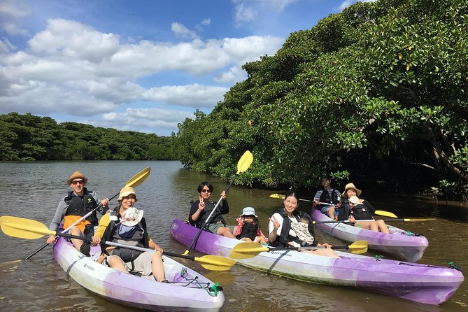 Adventure on Ishigaki Island with a mangrove canoe こ う Let's go see the mangrove creatures and scenery!