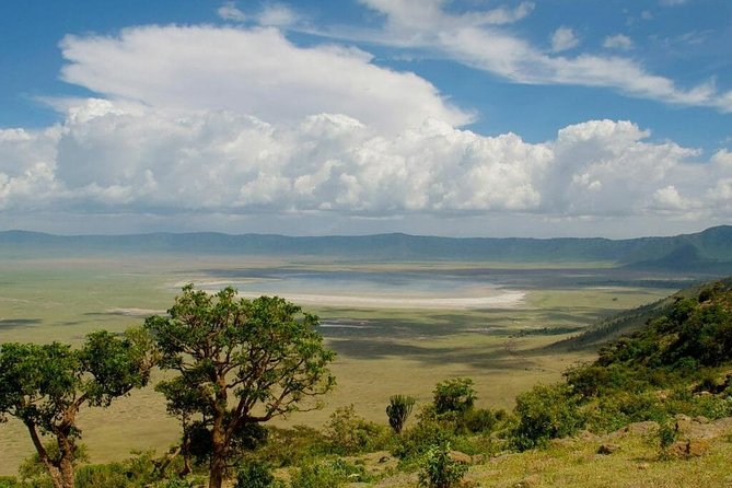 1 Day Trip From Arusha to the Spectacular View of Ngorongoro Crater