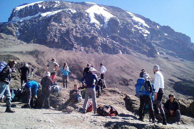 7 Days Lemosho climbing kilimanjaro