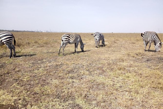 Amboseli National Park Day Tour from Nairobi photo 4