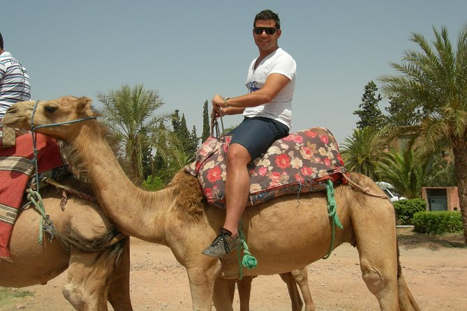Camel Ride Tour in the Palm Grove of Marrakech