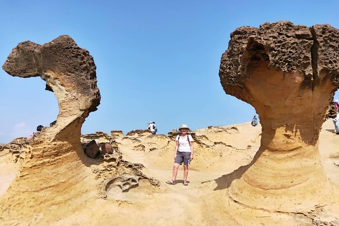 Half Day Private Tour to Yangmingshan National Park and Yehliu Geopark