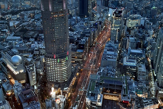 Ultimate Tokyo Day & Night Experience with photographer photo 6