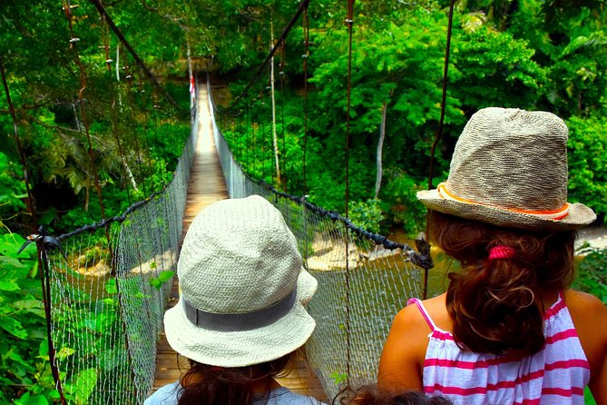 FAMILY JUNGLE TOUR: Orangutan Trek (4-hours hike) by EcoTravel Bukit Lawang photo 11