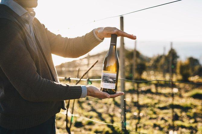 Wine tour Bonassola - Visite uma vinícola orgânica
