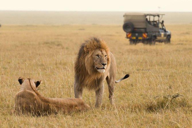 3 days Tsavo East And Tsavo West Safari From Mombasa /Malindi/Watamu/Diani