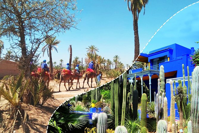 Best of Kech Tour: Majorelle Garden with Camel Ride in the Palms from Marrakech