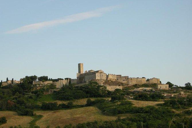 نقل خصوصي : من مدينة روما إلى مدينة تاركوينيا و العكس