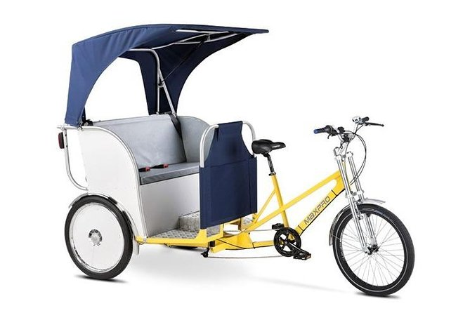 1 hour Amsterdam City Tour in Pedicab