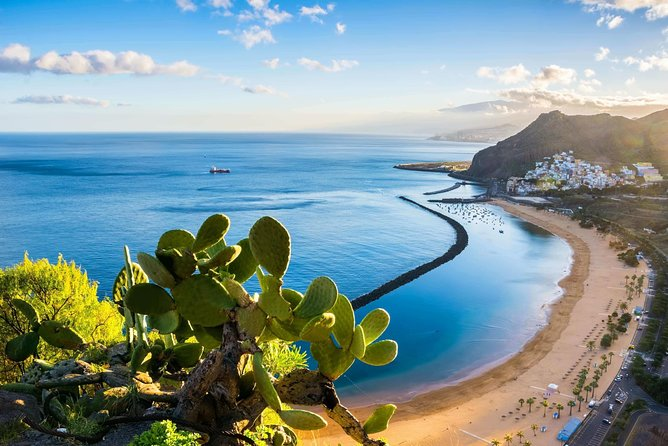Private car transfer from Tenerife South/Reina Sofia Airport to Costa Adeje