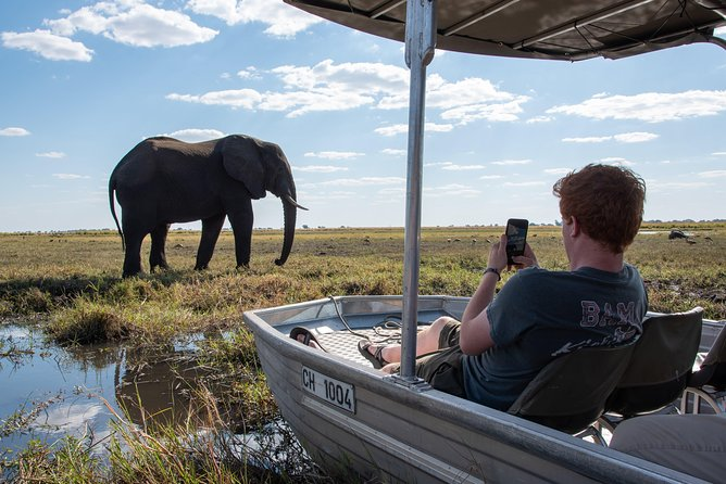 Chobe experience Day trip