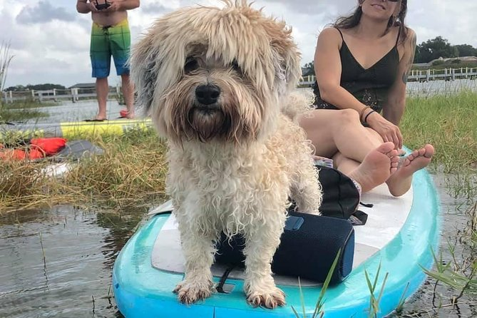 Paddle with Pups in Paradise photo 6