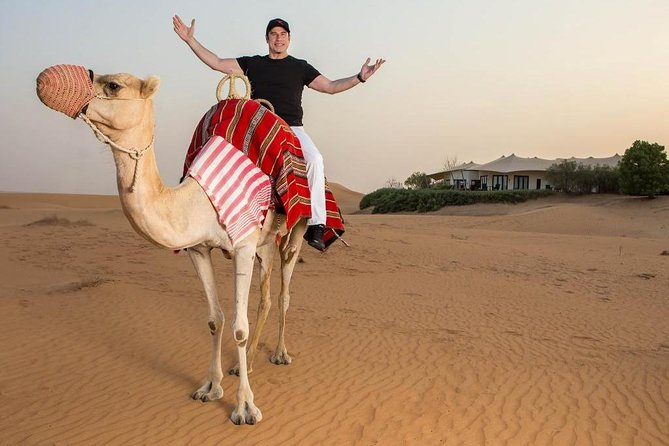 Two hours Horse Riding At Amazing Desert - Sharm ElSheikh photo 2