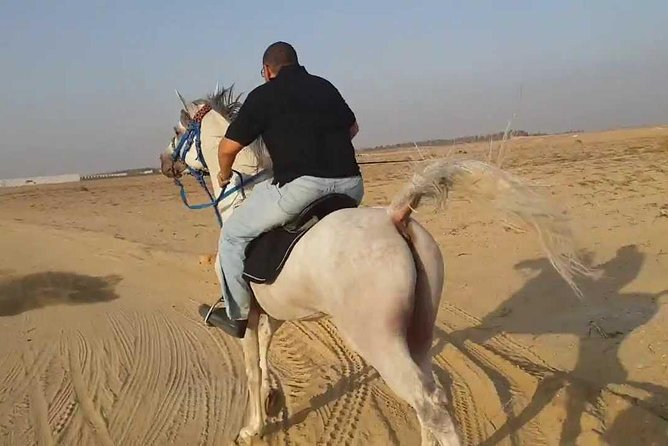 Two hours Horse Riding At Amazing Desert And sea - Hurghada photo 7