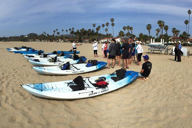 Kayak Tour of Santa Barbara with Experienced Guide