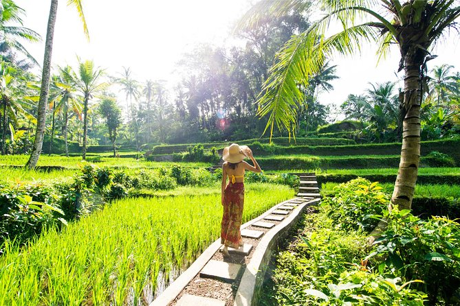 Small Group Full Day Tour Eat Pray Love Bali