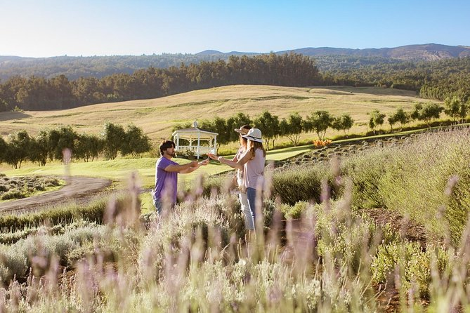 PRIVATE Upcountry Tasting: Coffee, Winery, Lavender Farm, Lunch & Distillery