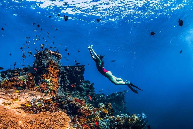 Amed Bali Snorkelling: Japanese Shipwreck & Vienna Beach – Full Day