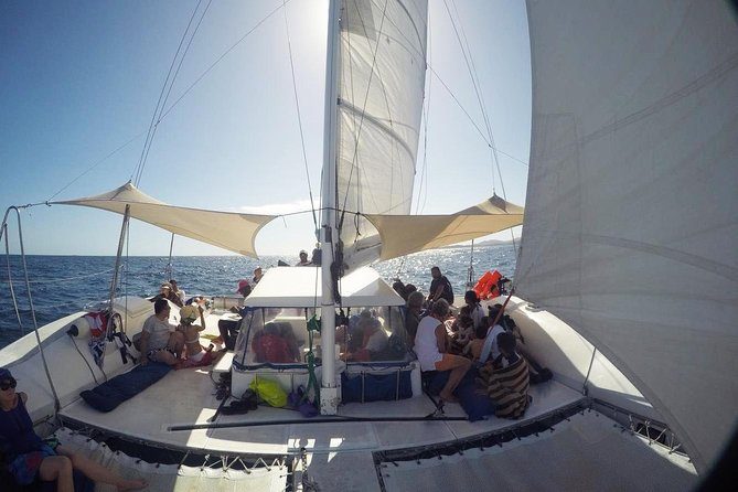 Coral Cats Day Sail with Snorkelling Tours, Sandbar Lunch , Musket Cove Resort