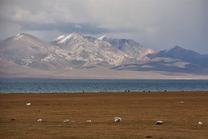 Song-Kol lake tour. 2 days. Kyrgyzstan photo 8