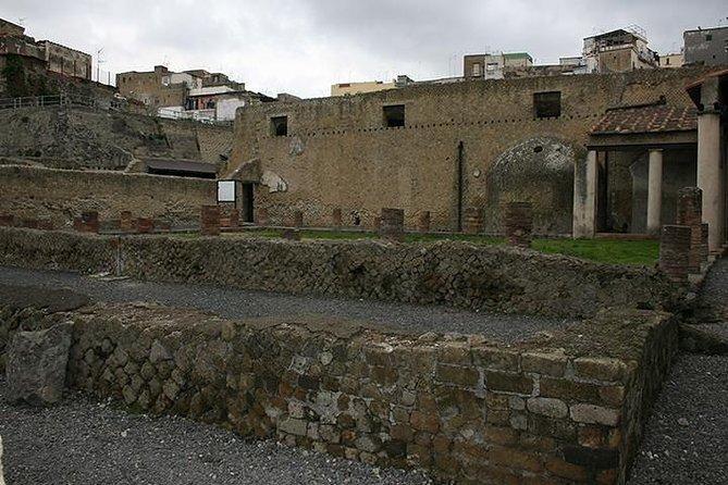 Private Herculaneum & Mount Vesuvius Shore Excursion from Naples Port