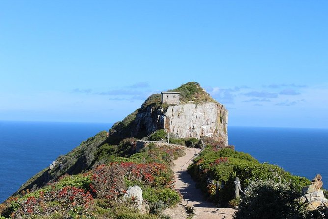 Cape Point & Table Mountain Tour