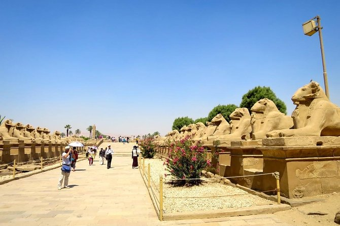 Private 2 full days Luxor east and west bank with accommodation in Luxor resort photo 23