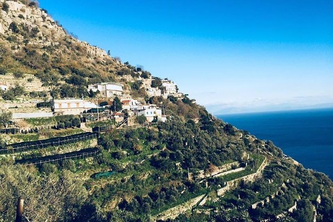 """Discovering """"the GOLD of the Amalfi Coast"""""""