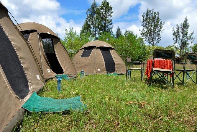 5 days into the heart of serengeti (serengeti, ngorongoro, lake manyara)