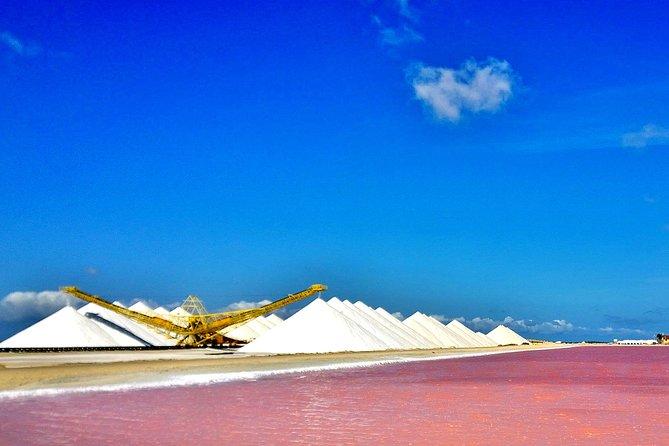 Salt Discovery Tour