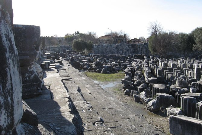 Priene -Miletus-Didyma Tour photo 11