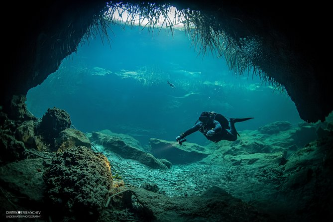 Discover Scuba Diving in cenote Casa