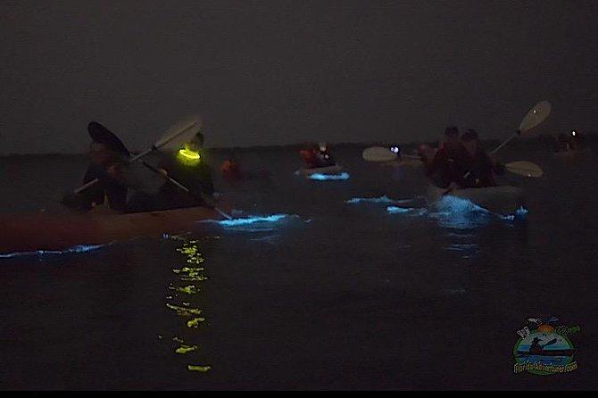 Clear Kayak Florida Bioluminescence Tour | Beacon 42 (Titusville)